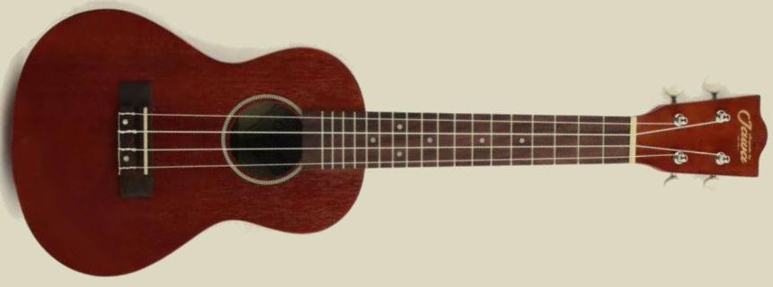 Kaua'i-C15