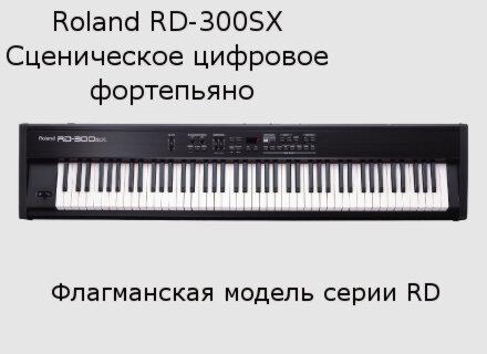 rd300sx_m.jpg